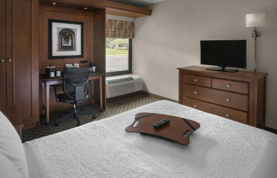 Chambre Hampton Inn Ann Arbor-South