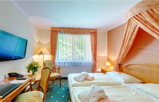Single room (superior) Trihotel am Schweizer Wald