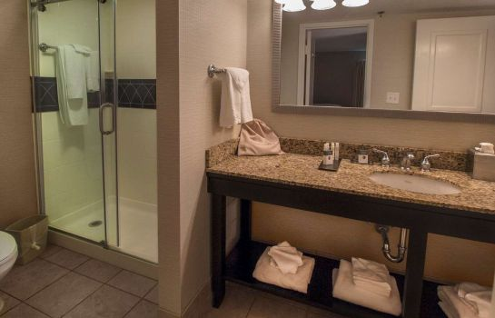 Suite DoubleTree by Hilton Buffalo-Amherst