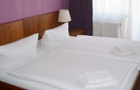 Hotel Zum Goldenen Stern Leibsch