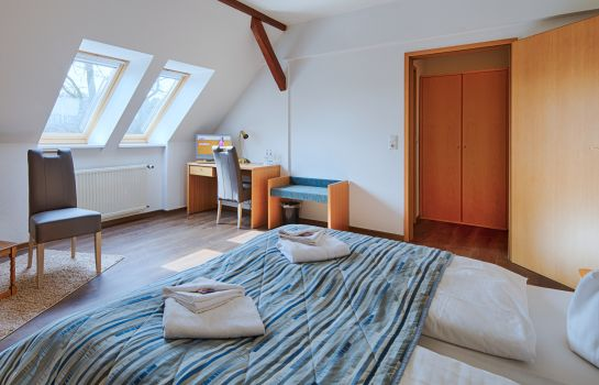 Double room (superior) Hotel Luther Birke Wittenberg
