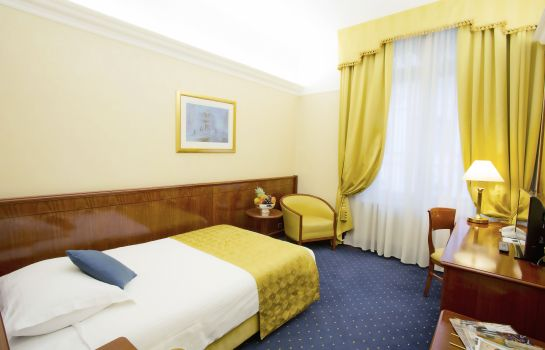 Single room (standard) Palace Hotel