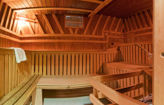 Sauna Center Hotel Zwickau Mosel