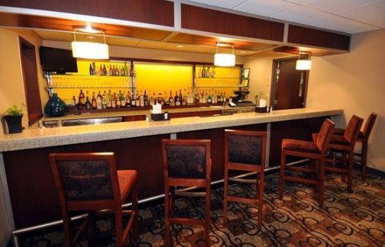 Hotel bar BEST WESTERN  PLUS HOTEL TRIA
