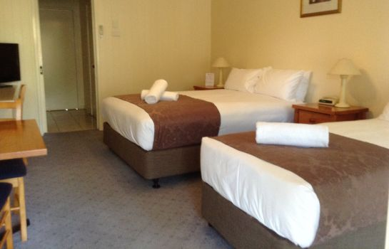 Double room (standard) Lakeview Motor Inn