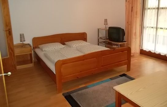 Chambre double (standard) Aparthotel