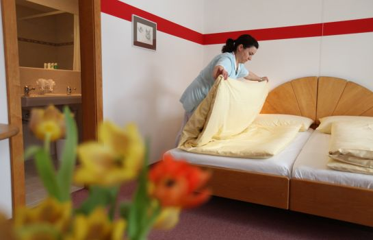 Doppelzimmer Standard  Typically Swiss Hotel Altana