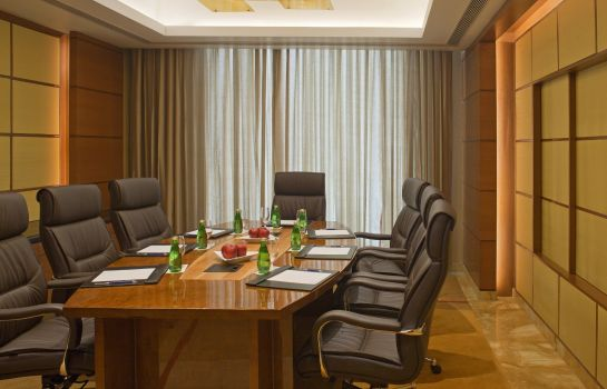 Conference room RADISSON BLU PLAZA DELHI