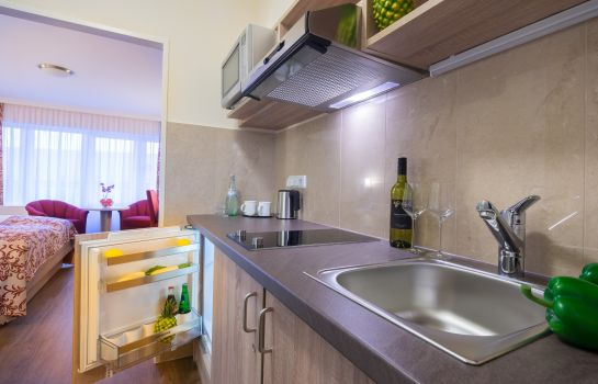 Kitchen in room Apartment-Hotel