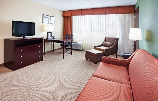 Suite Holiday Inn KNOXVILLE DOWNTOWN