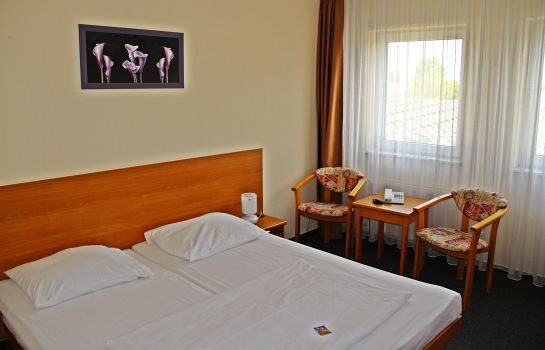 Single room (standard) astral'Inn Hotel & Restaurant