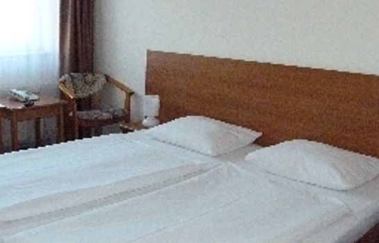 Double room (standard) astral'Inn Hotel & Restaurant