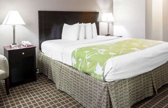 Room Econo Lodge Birmingham