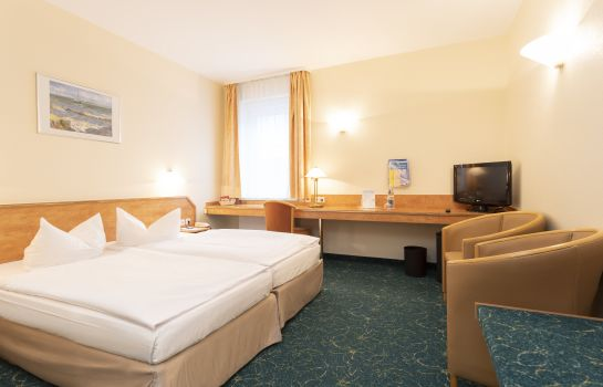 Double room (standard) City Park Hotel
