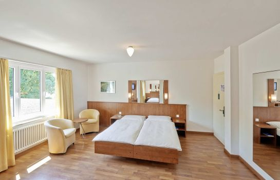 Chambre double (standard) Sorell Hotel Sonnental