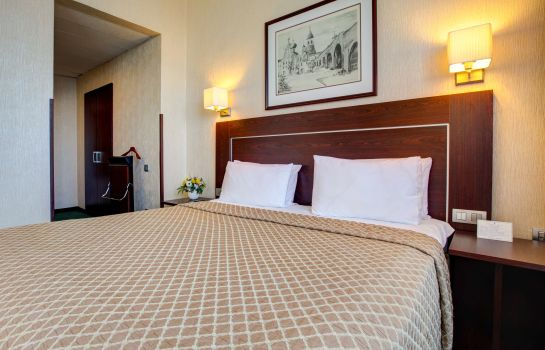 Double room (superior) Aerostar Hotel