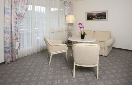 Junior Suite Winkelried