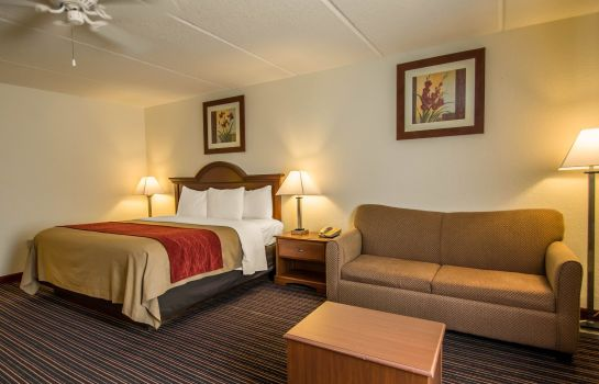 Suite Comfort Inn Kissimmee-Lake Buena Vista S