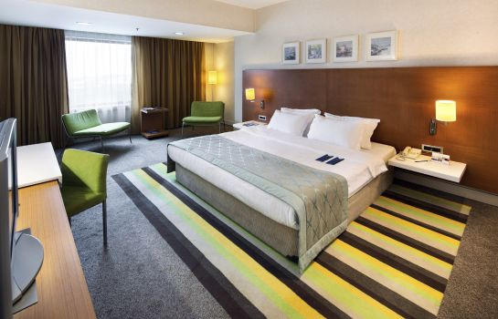 Double room (standard) Istanbul Radisson Blu Conference & Airport Hotel