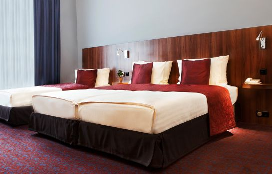 Double room (standard) Ramada City Center