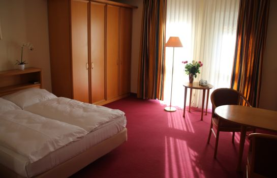 Double room (standard) Eurotel am Main