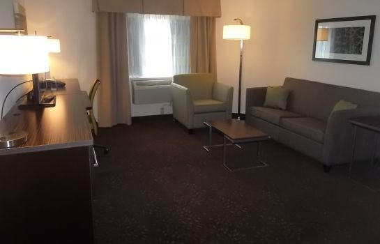 Suite Holiday Inn GREENSBORO COLISEUM