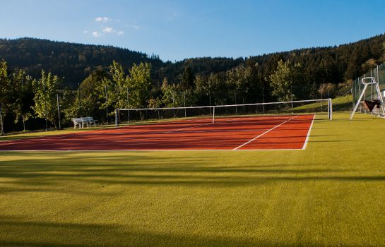 Tennis court Reblinger Hof