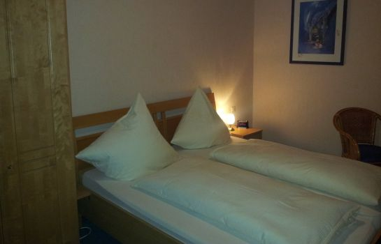 Double room (standard) Zur Winzergenossenschaft Hotel-Pension