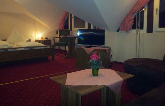 Double room (superior) Zur Winzergenossenschaft Hotel-Pension