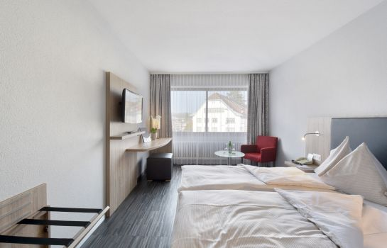 Double room (standard) Storchen