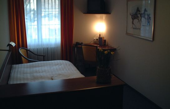 Single room (standard) Hotel Ochsen & Lodge