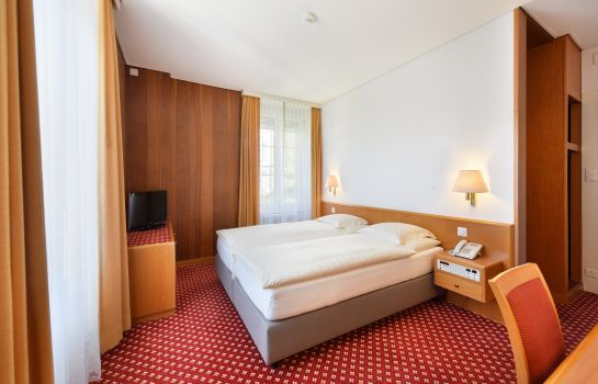 Double room (standard) Elite