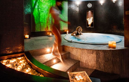 Whirlpool Ostia Antica Park Hotel Meeting Center & SPA