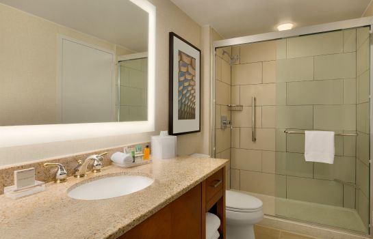 Kamers Hilton Chicago-Magnificent Mile Suites