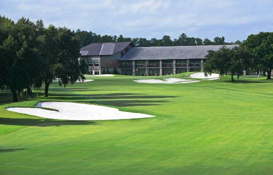 Einzelzimmer Komfort Arnold Palmer's Bay Hill Club & Lodge