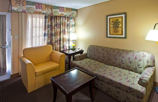 Suite Holiday Inn Hotel & Suites TAMPA N - BUSCH GARDENS AREA