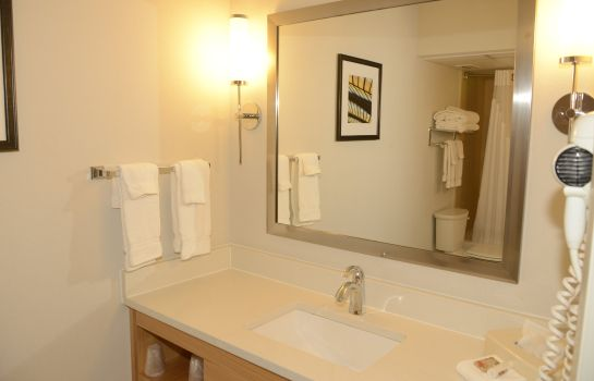 Zimmer Holiday Inn & Suites TAMPA N - BUSCH GARDENS AREA