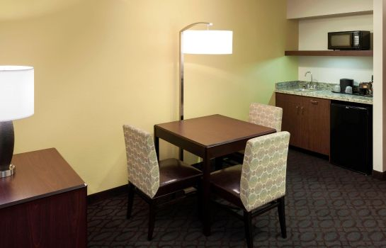 Suite SpringHill Suites Dallas Downtown/West End