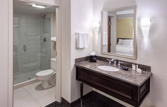 Info SpringHill Suites Dallas Downtown/West End