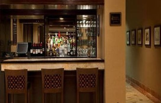 Hotel-Bar Holiday Inn LAS COLINAS
