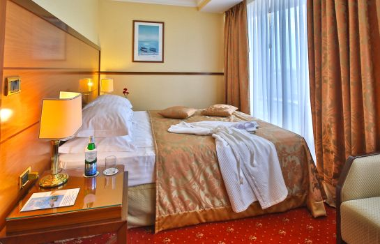 Double room (standard) Golden Ring Hotel