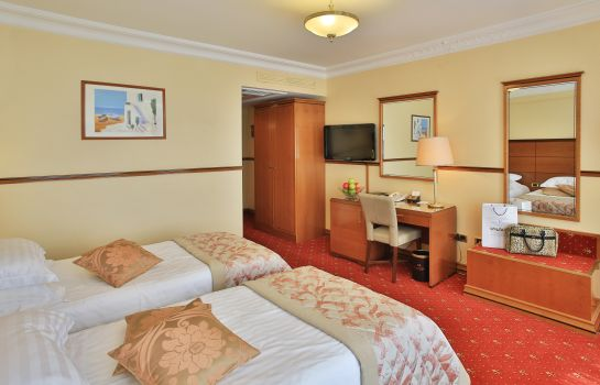 Double room (superior) Golden Ring Hotel