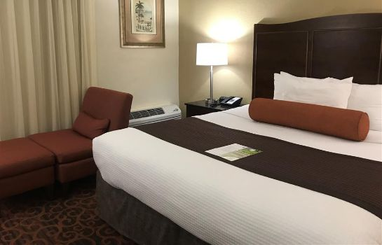 Zimmer BEST WESTERN PLUS WINDSOR INN