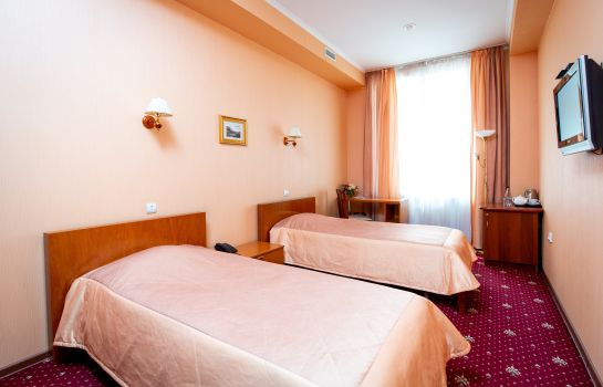 Double room (standard) Guyot Business Hotel
