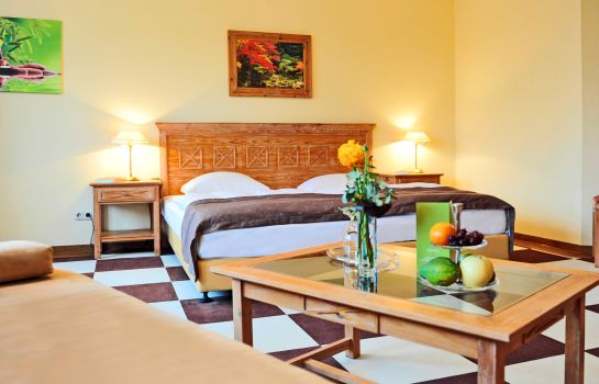Doppelzimmer Standard Dreiklang Business & Spa Resort