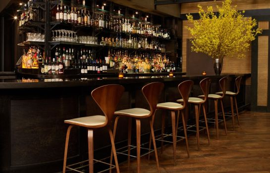 Hotel-Bar Roxy Hotel frmly Tribeca Grand