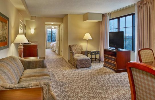 Suite Embassy Suites by Hilton Orlando Downtown