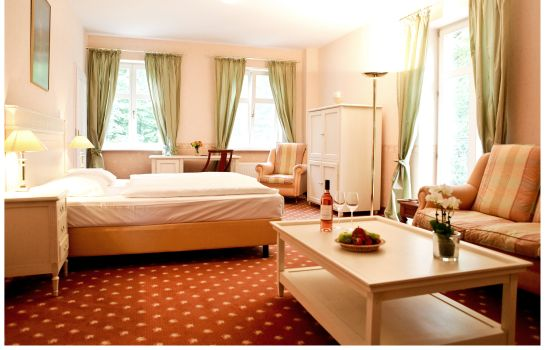 Double room (standard) Schloss Schorssow