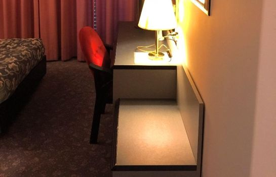 Chambre individuelle (standard) Internazionale Hotel Residence