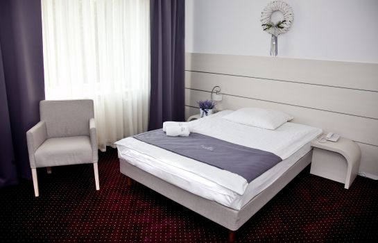 Single room (standard) Lavender Hotel Poznań